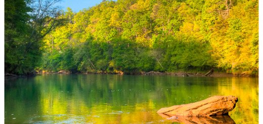 Lazy Morning On The Chattahoochee River