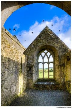Art Print of Birds In Flight Over the Irish Ruins of Ross Errilly Friary - Galway